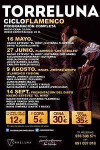 2013-05-16_02-18-58_ciclo-flamenco-web