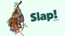 "VI ""Slap Festival 2015″, del 4 al 5 de julio en el Camping Municipal deZaragoza"